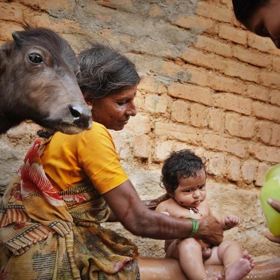 Andhra Pradesh_(India)